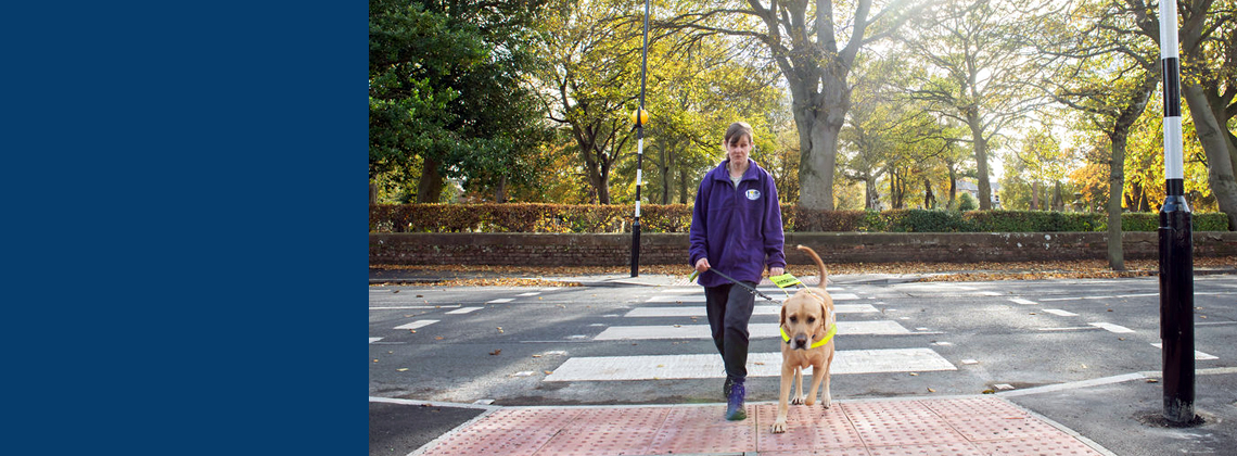 Blind woman crossing the road with the aid of a guide dog.