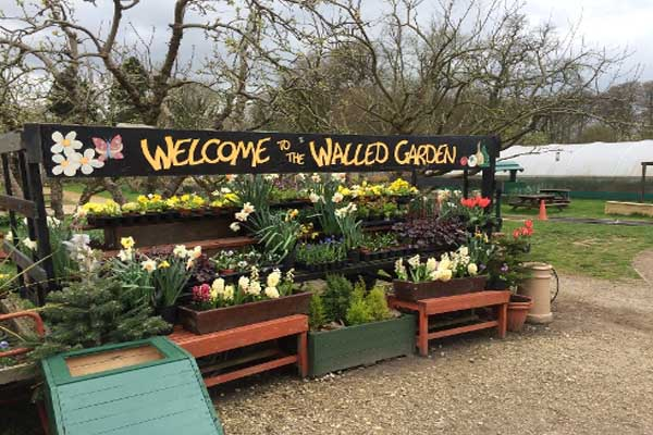 Ripon Walled Garden Cafe is offering Healthier Choices in North Yorkshire.