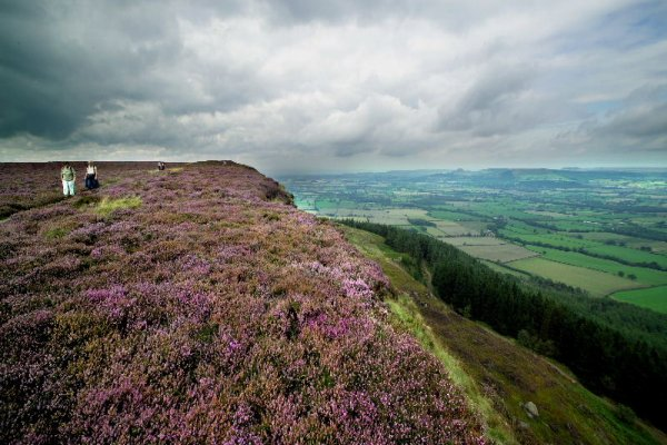 A picture of North Yorkshire Moorland