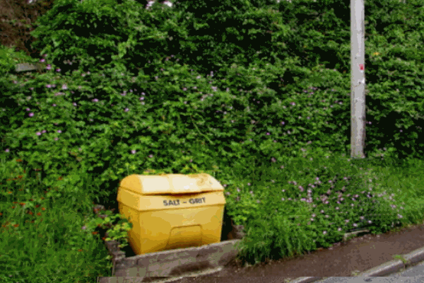 Grit bin in front of some foliage