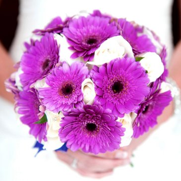 Beautiful bouquet of bridal flowers
