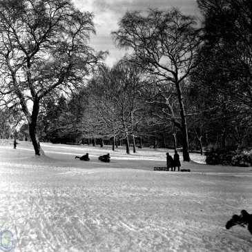 People sledging on Harlow Moor