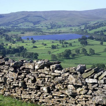 View of the Yorkshire Dales