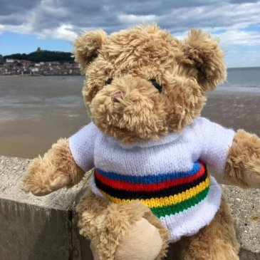 Bear in Scarborough