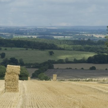 Hay bales and view of countryside