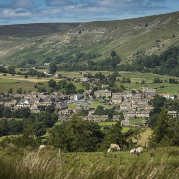 Reeth rural housing