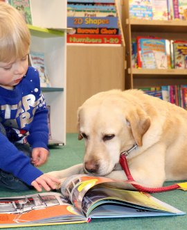 A visitor to Selby library meets one of the Pets as Therapy dogs involved in the sessions there